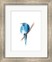 Blue Bird III Fine-Art Print