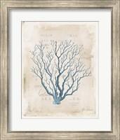 Sea Garden V Fine-Art Print