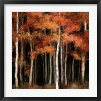 October Woods Fine-Art Print
