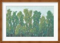 Forest Green II Fine-Art Print