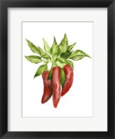 Watercolor Veggie II Fine-Art Print