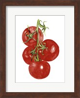 Watercolor Veggie IV Fine-Art Print