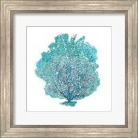 Teal Coral on White I Fine-Art Print