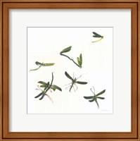 Stir Fly Fine-Art Print