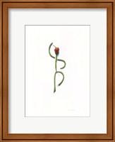 String Bean Chili Pepper Dancer Fine-Art Print