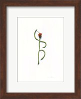String Bean Chili Pepper Dancer Fine-Art Print
