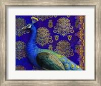 Indian Peacock Fine-Art Print