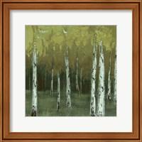 Look In The Woods Fine-Art Print