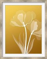 Floral 6 Fine-Art Print