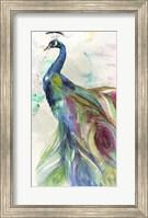 Peacock Dress Fine-Art Print