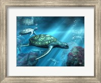 Sea Turtles Fine-Art Print