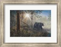 Shadow In The Mist Fine-Art Print