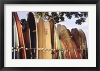 Long Boards Waikiki Fine-Art Print