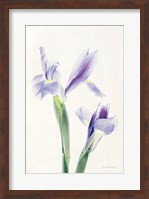 Light and Bright Floral III Fine-Art Print