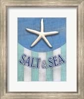Starfish Soft Font Fine-Art Print