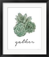 Gather - Cactus Fine-Art Print