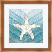 Coastal Starfish Fine-Art Print