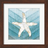 Coastal Starfish Fine-Art Print