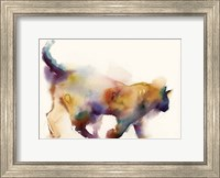 Curious Cat Fine-Art Print