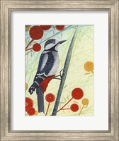Woodpecker Fine-Art Print