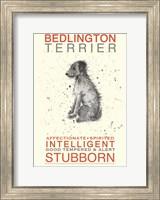 Bedlington Terrier Fine-Art Print
