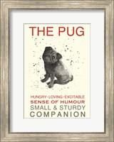 Black Pug Fine-Art Print