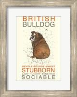British Bulldog Fine-Art Print