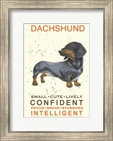 Dachshund Fine-Art Print