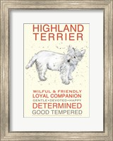 Highland Terrier Fine-Art Print