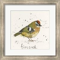 Firecrest Fine-Art Print