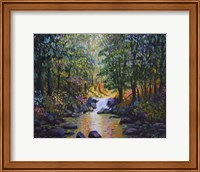 Wooded Stream Fine-Art Print