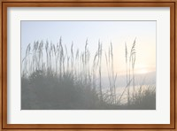 Morning Whisper I Fine-Art Print
