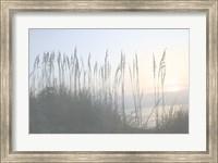 Morning Whisper I Fine-Art Print