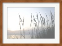 Morning Whisper II Fine-Art Print