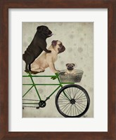 Pugs on Bicycle Fine-Art Print
