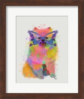 Rainbow Splash Pomeranian Fine-Art Print