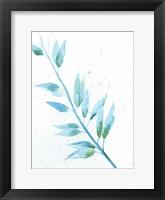 Leaf Sunshine II Fine-Art Print