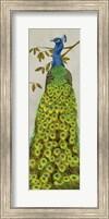Vintage Peacock II Fine-Art Print
