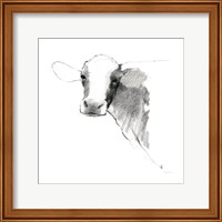 Cow II Dark Square Fine-Art Print