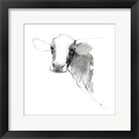 Cow II Dark Square Fine-Art Print