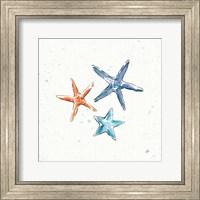 Maritime XII Fine-Art Print