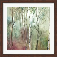 Birch in the Fog I Fine-Art Print