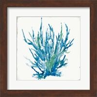 Blue Coral I Fine-Art Print