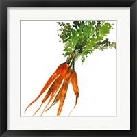 Carrot Fine-Art Print
