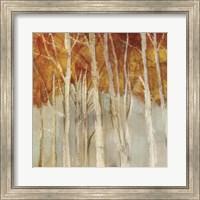 Belgium Forest II Fine-Art Print
