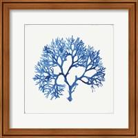 Blue and Green Coral V Fine-Art Print