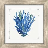 Blue and Green Coral III Fine-Art Print