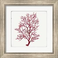 Red Coral III Fine-Art Print