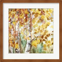 Watercolor Fall Aspens Square Fine-Art Print