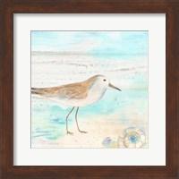 Sandpiper Beach III Fine-Art Print